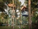Trải nghiệm khách sạn trên cây giữa rừng nhiệt đới